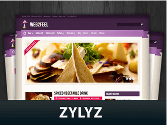 zylyz-wordpress-theme